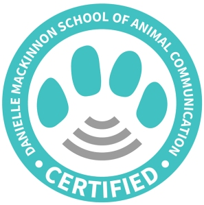 DM certification seal