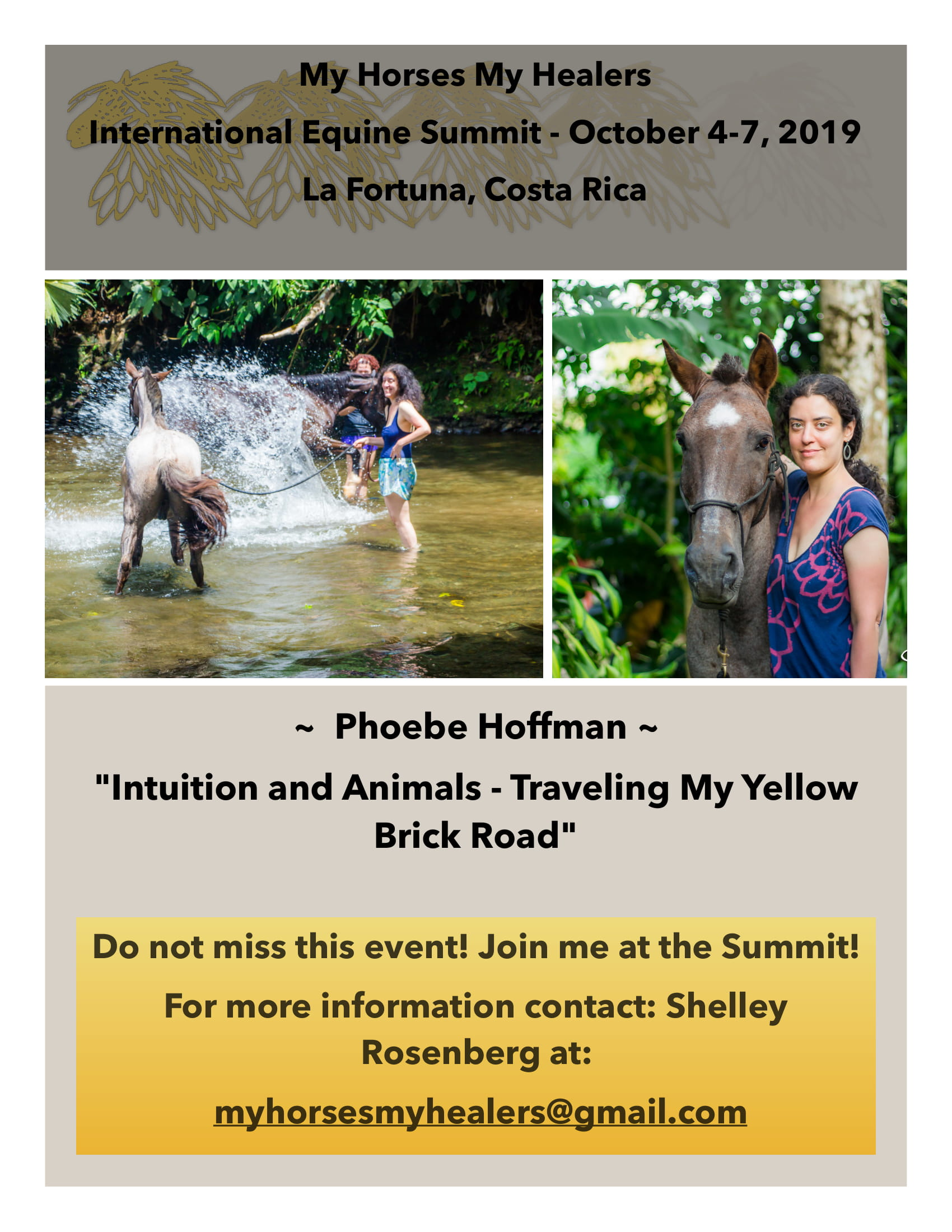 Phoebe Hoffman - Yellow Brick Road - 2019 Summit flyer -1 (1)